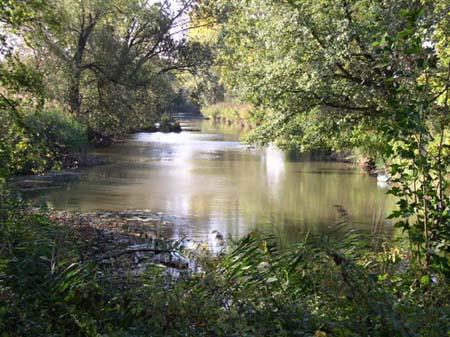 Gewässerbild des Espangrabens