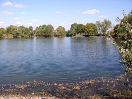 Gewässerbild des Haldensees