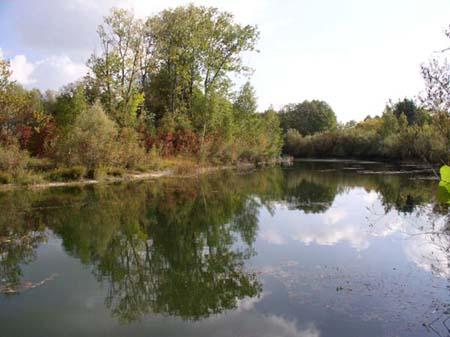 Gewässerbild A der Säulach