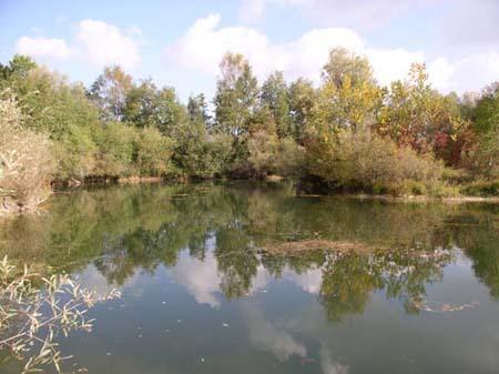 Gewässerbild B der Säulach