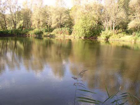 Gewässerbild der Steinernen Furt 1