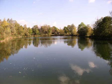 Gewässerbild des Wörthsees